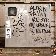 004 Aura Fallu Reste